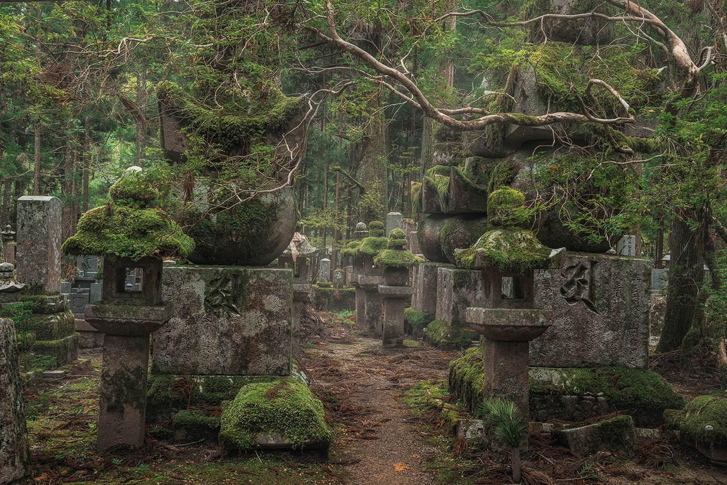 New Photos: Japan in autumn